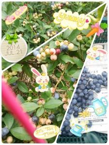 LINEcamera_share_2014-07-21-20-56-58.jpg